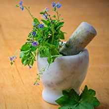 Herbal Tea Infusions