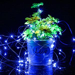 Extraordinary LED String Light