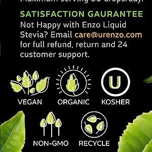Organic Vegan Non-Gmo Stevia Drops