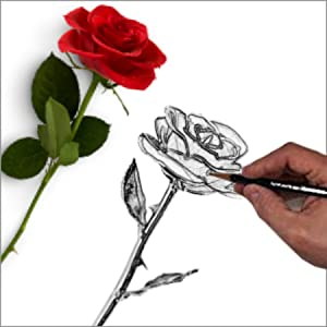 DeFaith 24K Gold Dipped Real Rose - Artwork of Love.