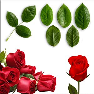 Select roses by artisans