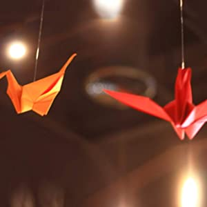 Two paper birds hanging by the string