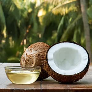 Real Coconut Body Lotion