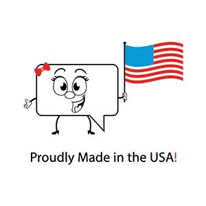 STORi logo holding American flag