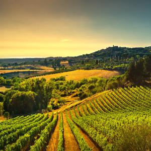 tuscany italy balsamic vinegar modena italia