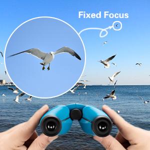 fixed focus