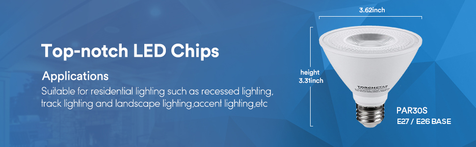 LED PAR30 Short Neck Light Bulb