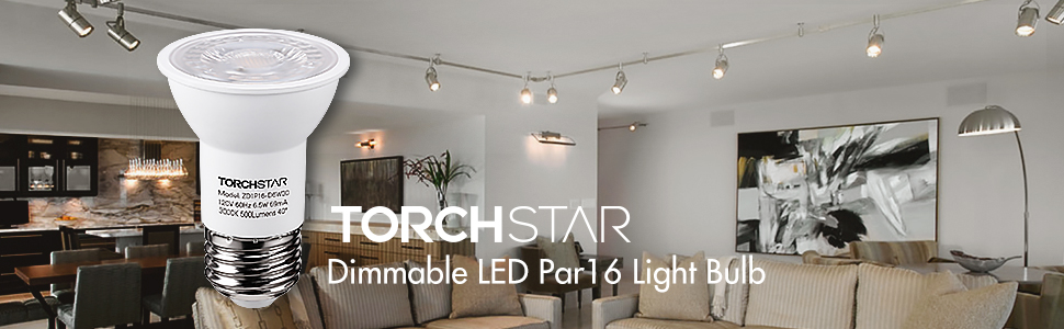 PAR16 Dimmable LED Spot Light Bulb