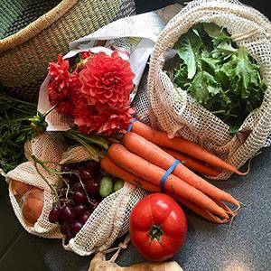 Reusable Grocery Bags_3