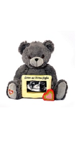 grey stuffed animal with frame baby picture frame