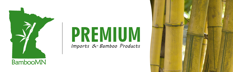 BambooMN bamboo premium imports products header banner logo green
