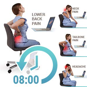 eight hours seat back lumbar cushion pain relief