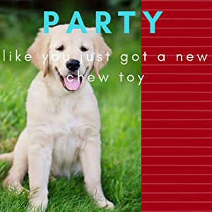 Party like you just got a new chew toy for puppy dog theme birthday celebration