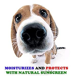 Moisturize and Protect