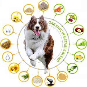 Pawrennial joint supplement for dogs dog hip and joint supplement hip and joint supplements for dogs