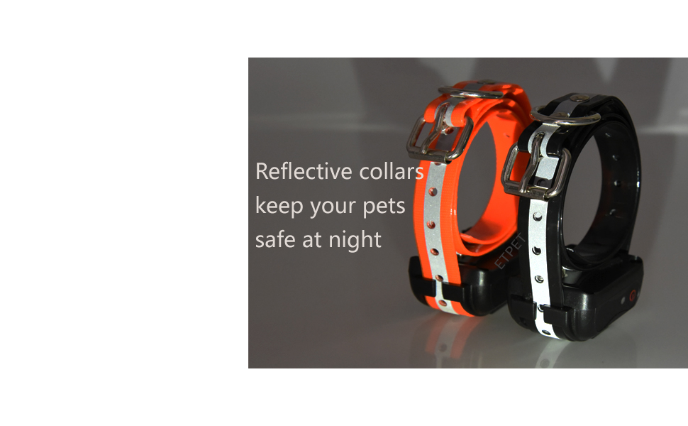 Dog Collar Belt for Most of Electronic Training Shock Collar Receivers