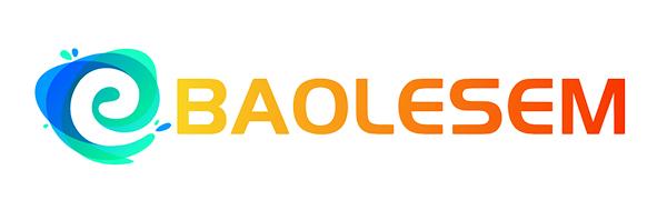 baolsem logo